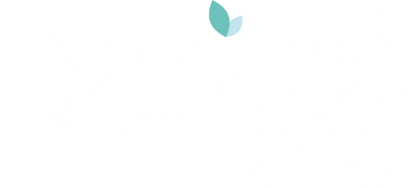 Dorothy's Teas